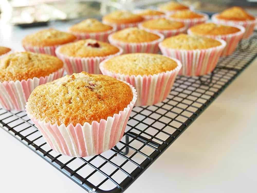 halloncupcake-muffin